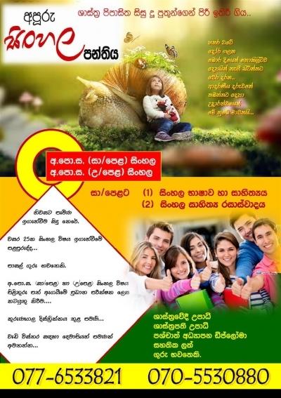 Sinhala Class( Privet Tuition)