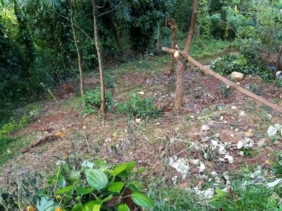 Land for Sale in Haldummulla