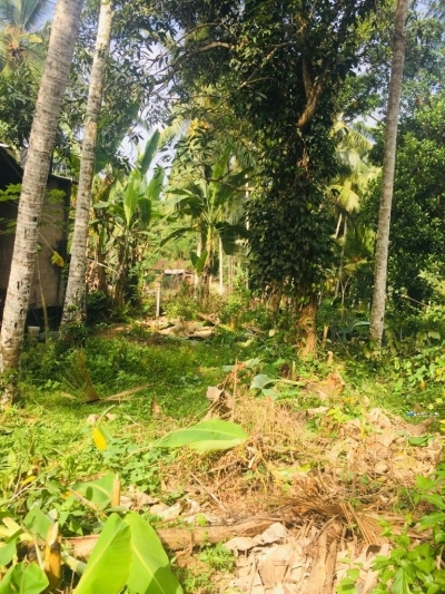Land for Sale in Homagama(Pitipana)