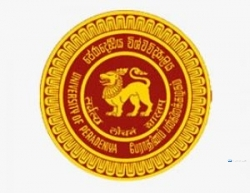 Computer Programmer - University of Peradeniya Government Jobs