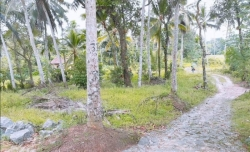 Valuable Commercial Property for Sale in Kalutara