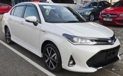 Toyota Axio WXB 2018