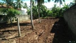 Land for Immediate Sale in Unawatuna(Galle)