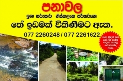 Commercial Land for Sale at Eheliyagoda