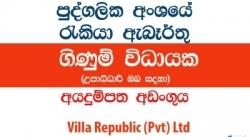Accountant / Accounts Executive-Villa Republic (Pvt) Ltd