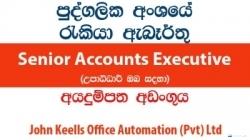Senior Accounts Executive – John Keells Office Automation (Pvt) Ltd