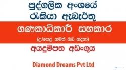 Accountant / Accountant Assistant – Diamond Dreams Pvt Ltd