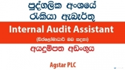 Internal Audit Assistant – Agstar PLC
