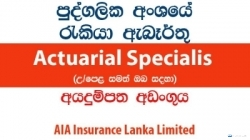 Actuarial Specialist (Contract Basis) – AIA Insurance Lanka Limited