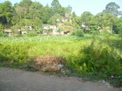 Land for Sale in Ratnapura