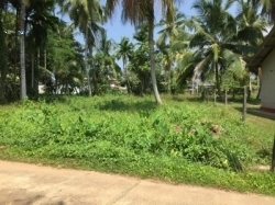 Land for Sale in Kalutara, Nagoda