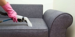 Sofa Cleaning and Domestic Service