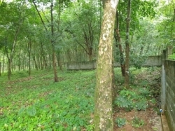 Land for Sale in Panagoda