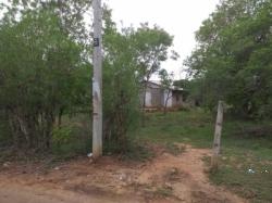 Land for Sale in Julpallama(Tissa)