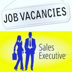 Sales Executive - Kottawa