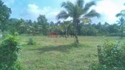Land for Sale in Ibbagamuwa