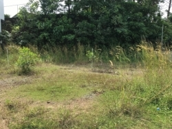 Land for Rent in Ratnapura