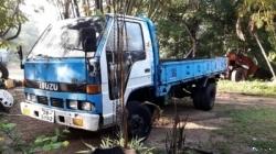 Isuzu ELF Lorry 1982