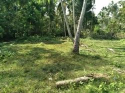 Land for Sale in Beliatta
