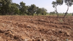 Land for Sale in Gonnoruwa (Near to Mattala Airport)