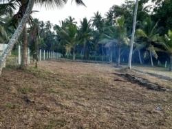 Land for Sale in Giriulla