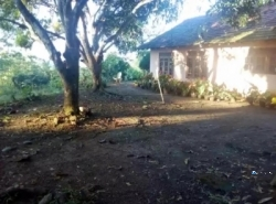 House with Land for Sale in Kekanadurra