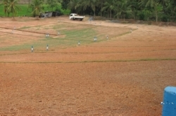Land for Sale in Kalutara