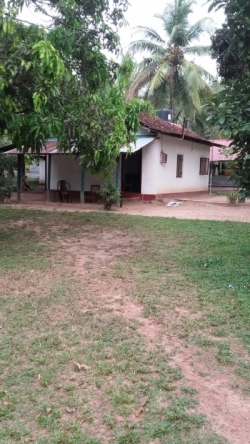 House With Land For Sale In Kuliyapitiya