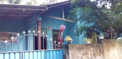 House for Sale In Tanglle